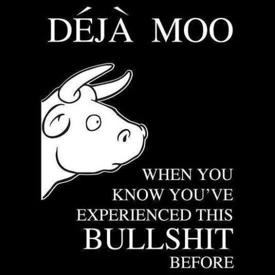 A bull in a picture with quote 'when you know you have experienced this bull shit before'